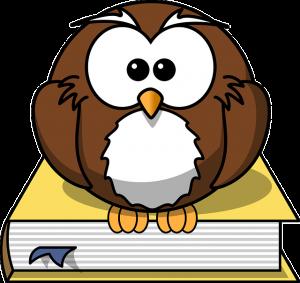 owl-297413_640