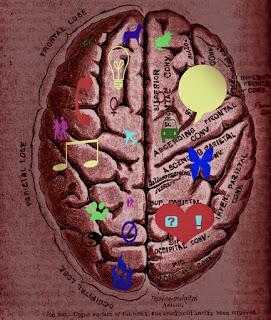 Diszlexiás agy
